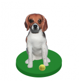 Customized Your Own Dog Bobble Heads