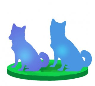 Customize Two Any Pet /Animal From Photo